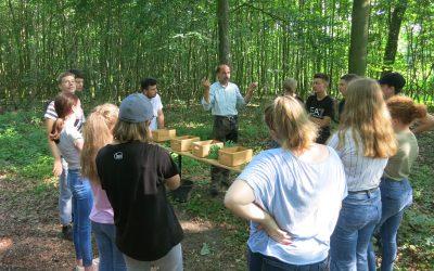 Achtklässler auf Exkursion im Geisterholz